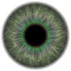 עין מוגדלת